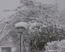 sne_vejr_tranbjerg_2212-09-44