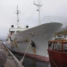tunfisk (2)